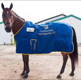 horsemassage-blankets